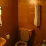 Brownest bathroom!