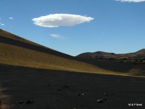 Black pampas and volcanos
