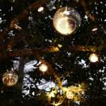 Mirror ball tree